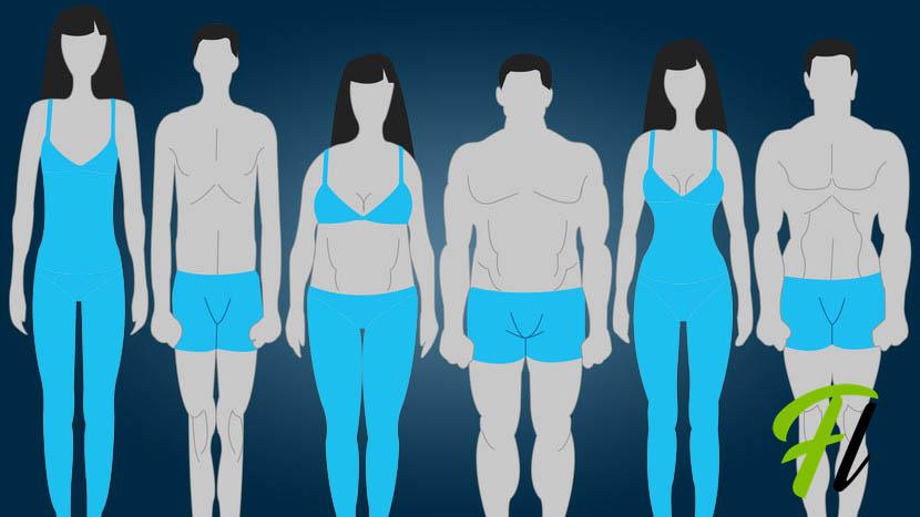 تیپ های بدنی زنان و مردان