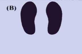 آموزش حرکت پرس پا با دستگاه