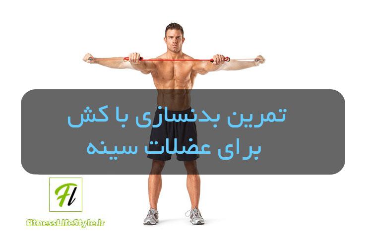 تمرین بدنسازی با کش برای عضلات سینه
