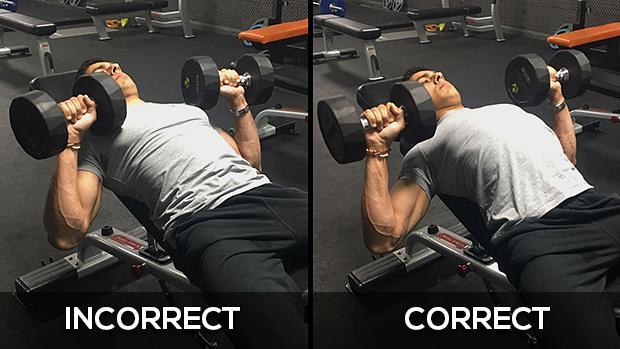 پرس بالا سینه دمبل - پرس بالا سینه - تمرین سینه